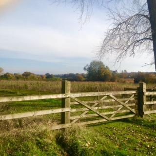 Langely Heath View2