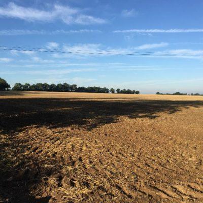 Langley parish fields